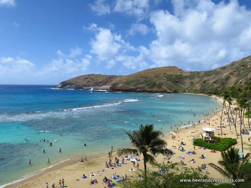 snorkelling in hanauma bay oahu