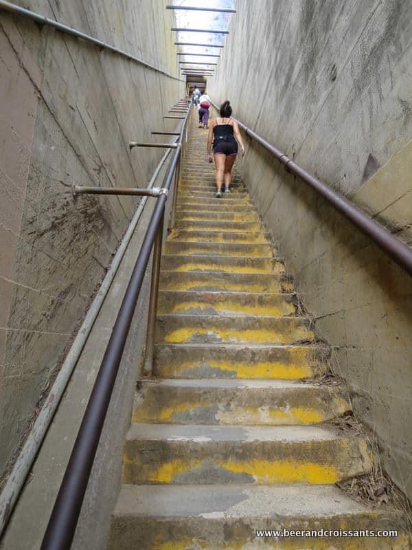 Steps At Diamond Head