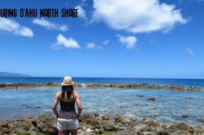 Touring the O'ahu North Shore