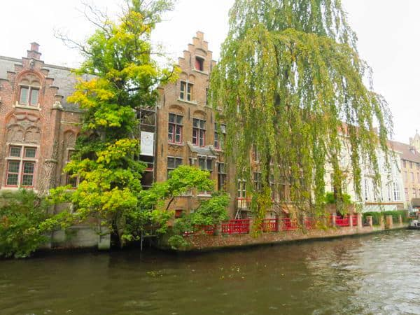 trees over the water in Bruges Belgium