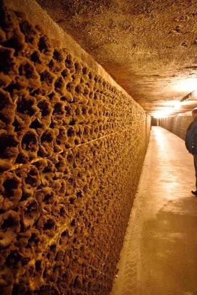 Moet and Chandon Cave tour Epernay