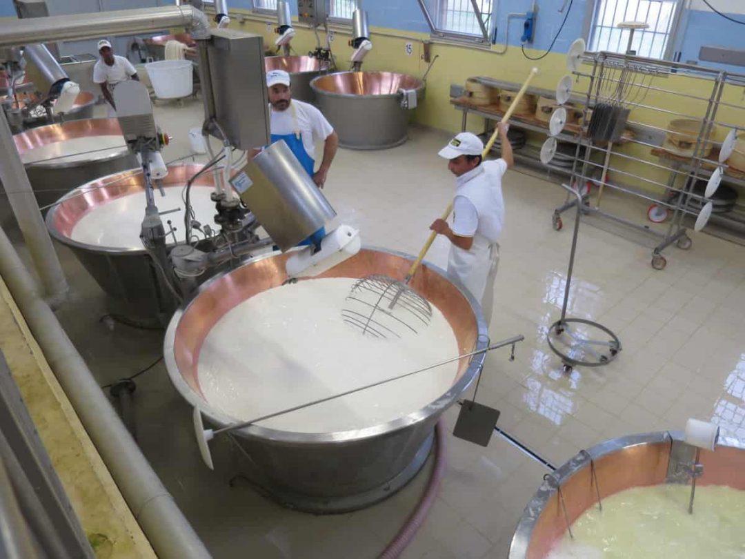 Parmigiano reggiano food tour Parma Italy