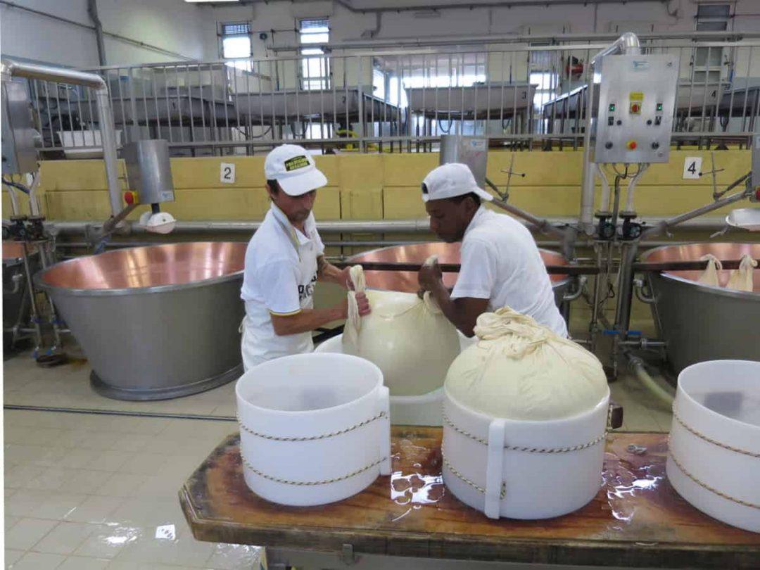 Making parmigiano reggiano food tour italy