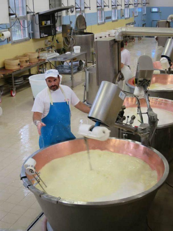 Mixing the curds on parmigiano reggiano food tour in parma italy