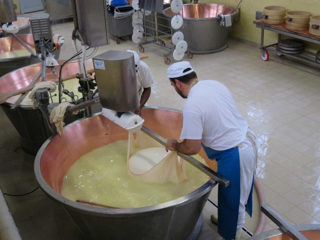 Parmigiano reggiano tour in parma italy