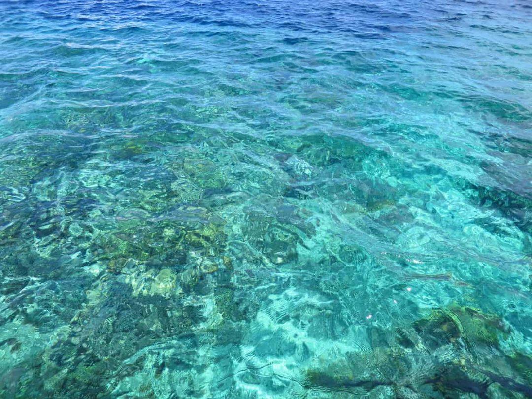 Reef on Bunaken Island Indonesia