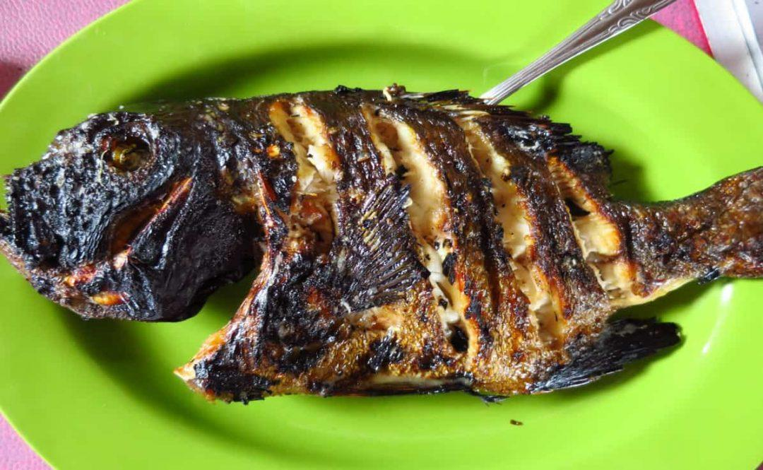 Fresh fish on Bunaken Island