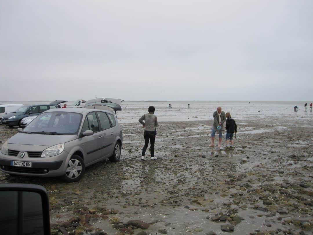 Parking the cars on the mud flats.