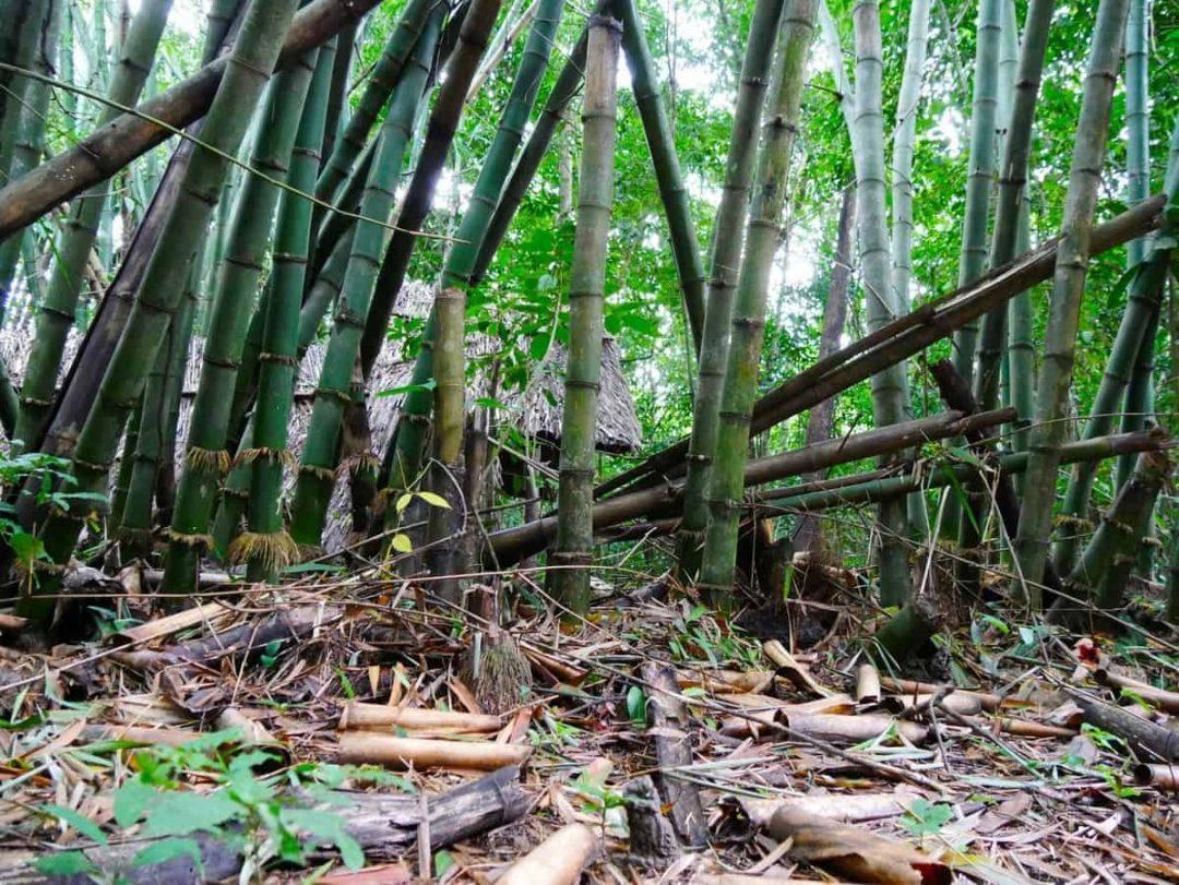 catching-the-bus-to-cuchi-tunnels-feature