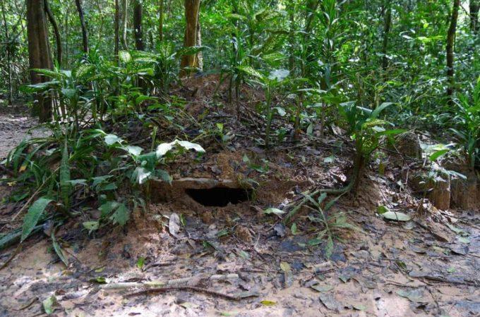 The hidden tunnels of the Cuchi Trail