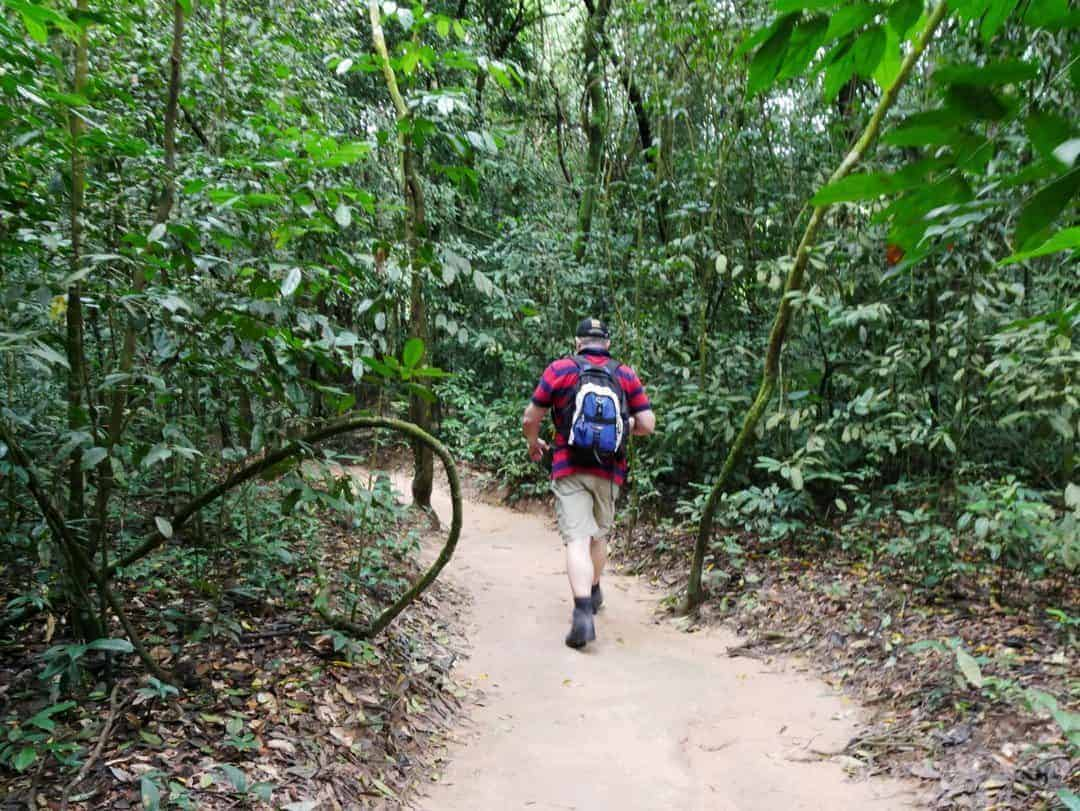 walking trails cuchi tunnel - why you shouldn't miss the cu chi tunnels