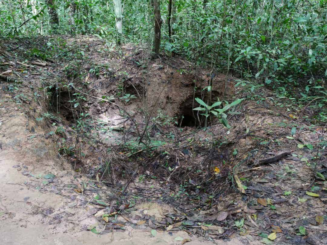 Why you shouldn't miss the Cu Chi tunnels - Vietnam
