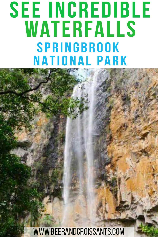 Springbrook Natoinal Park waterfalls