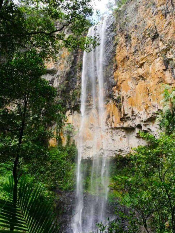 Horsetail falls at Purling Brooks Falls Springbrook National Park