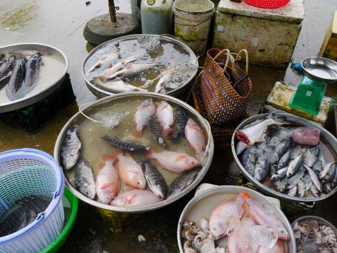 seafood-market-local-village