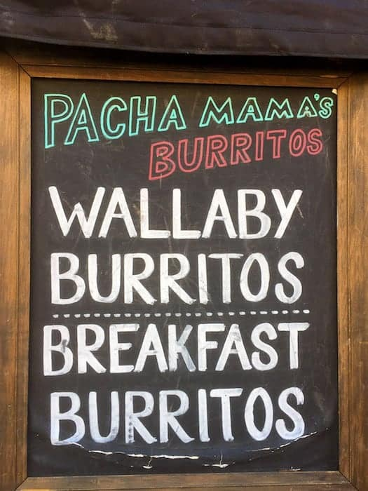 Eating wallaby burritos
