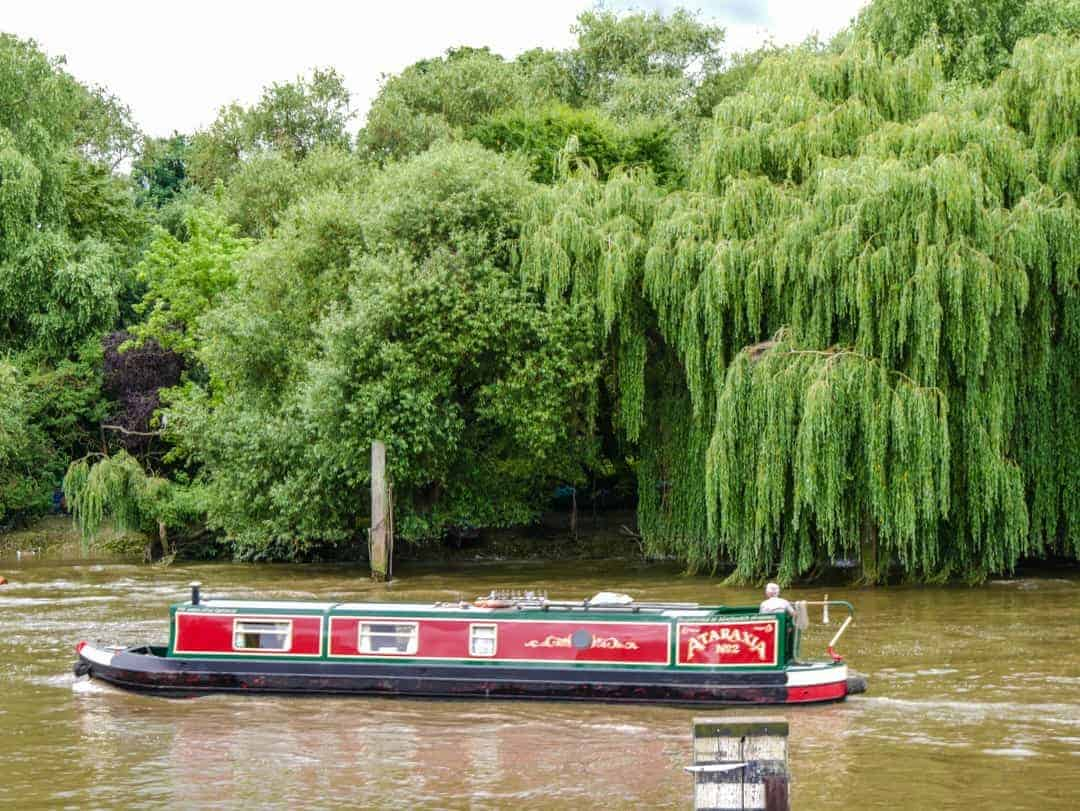 Pubs in Richmond London boat and weeping willow