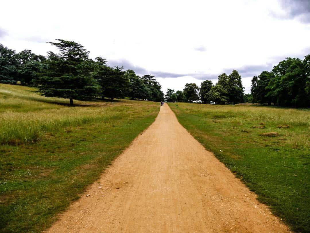 Richmond Park paths