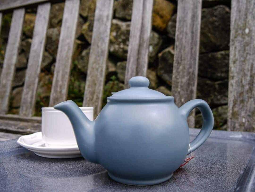 tea at Pembroke Lodge