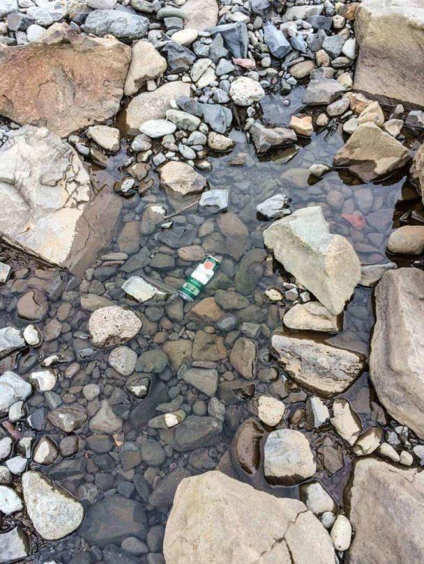 beers in creek to freeze