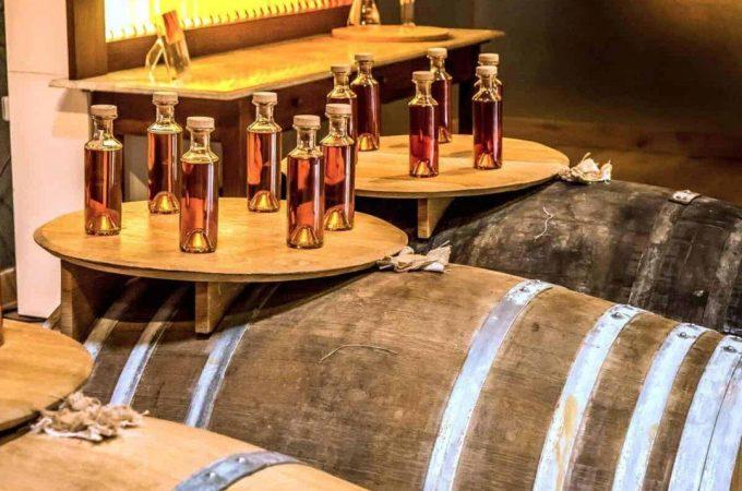 Remy Martin Visit Cognac feature