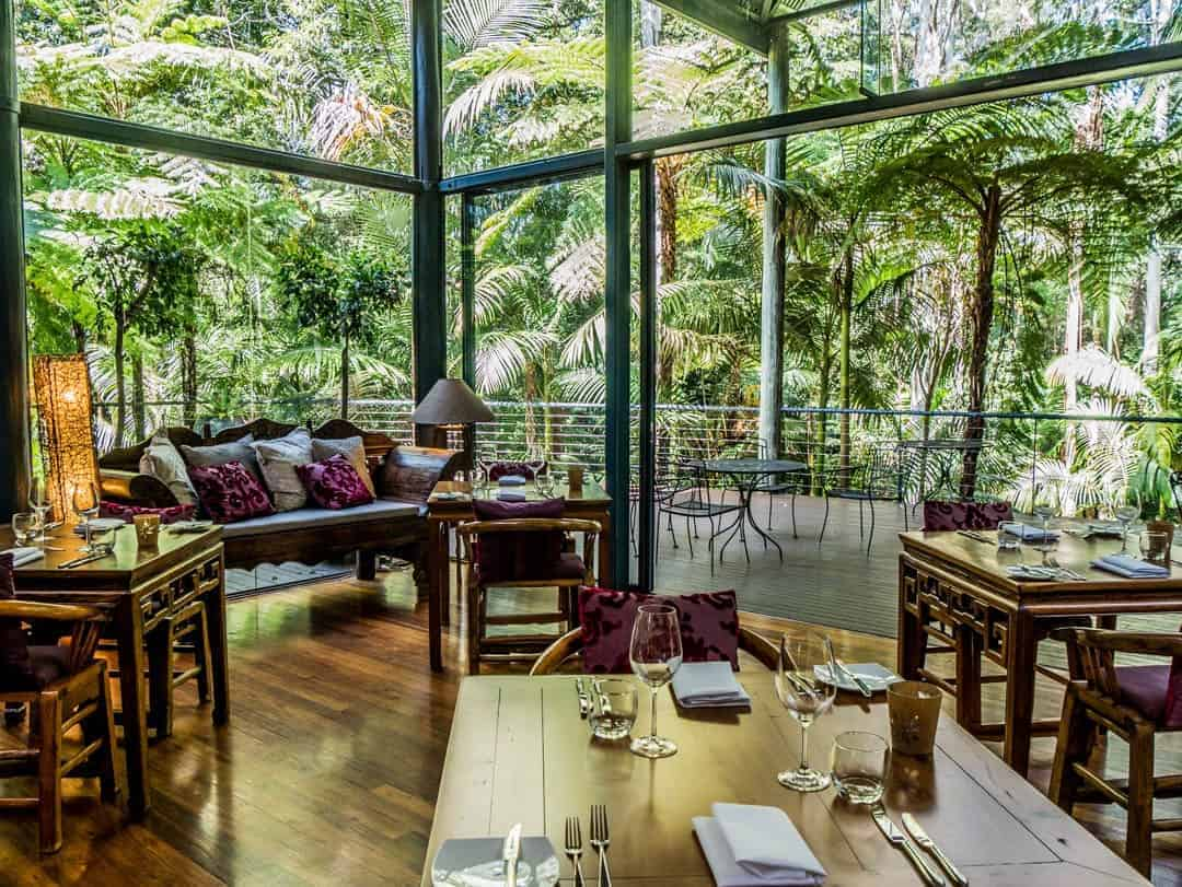 Pethers Rainforest Retreat restaurant