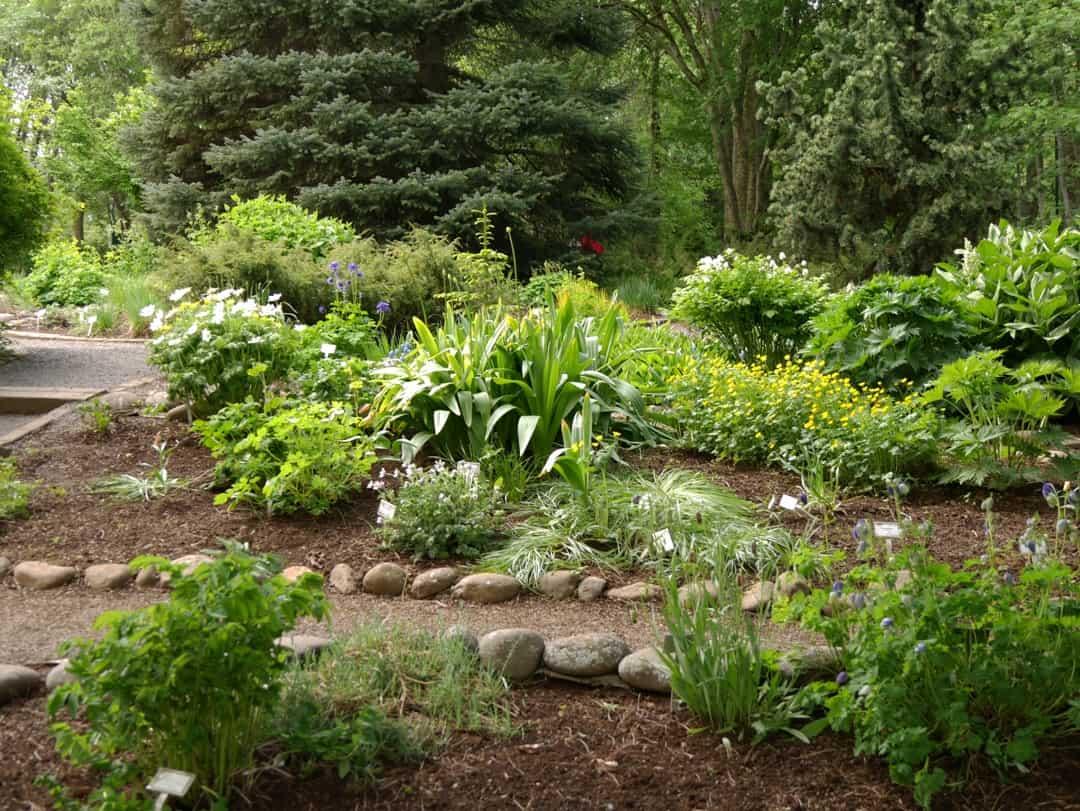 botanical gardens akureyri - visit akureyri