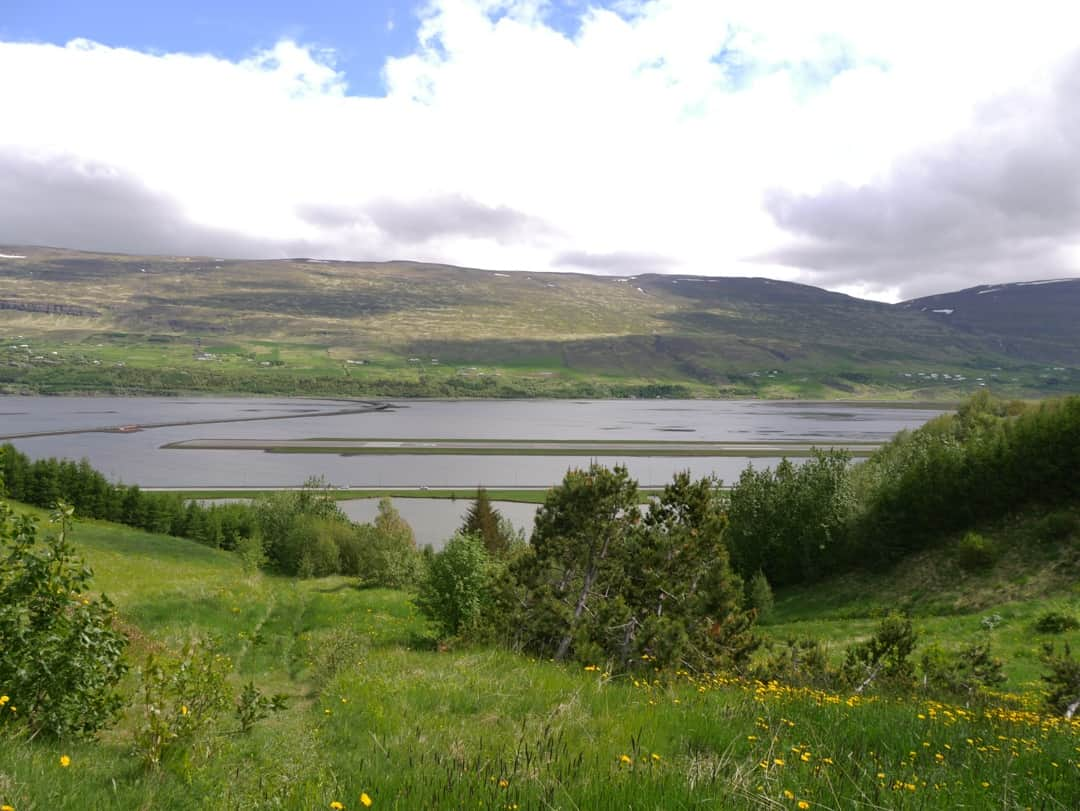 view over the fjord akureyri
