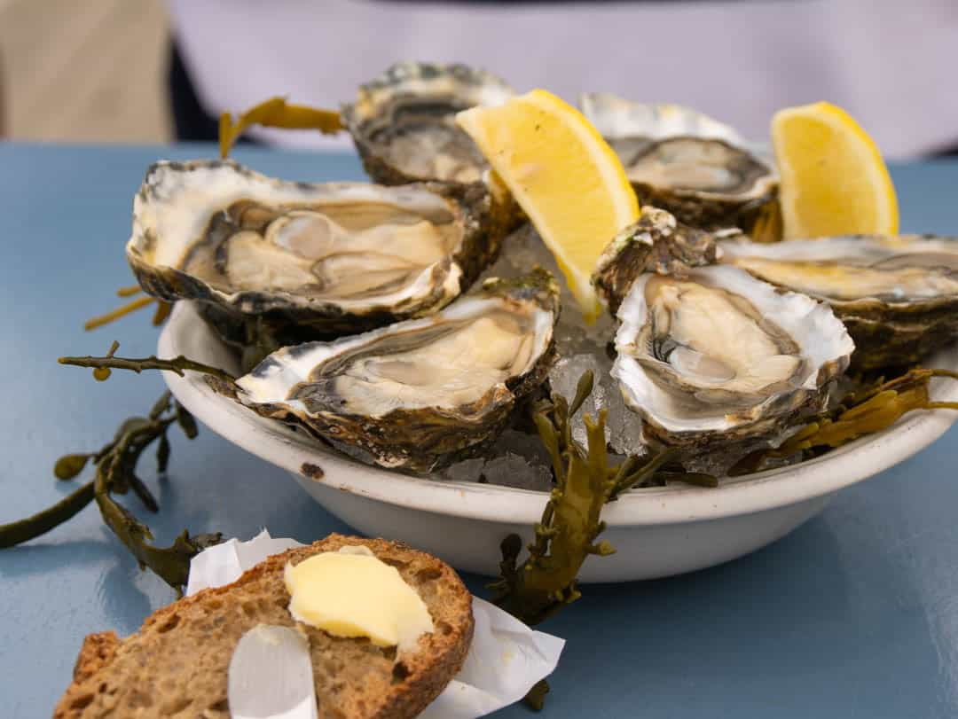 Chez Boulan oysters