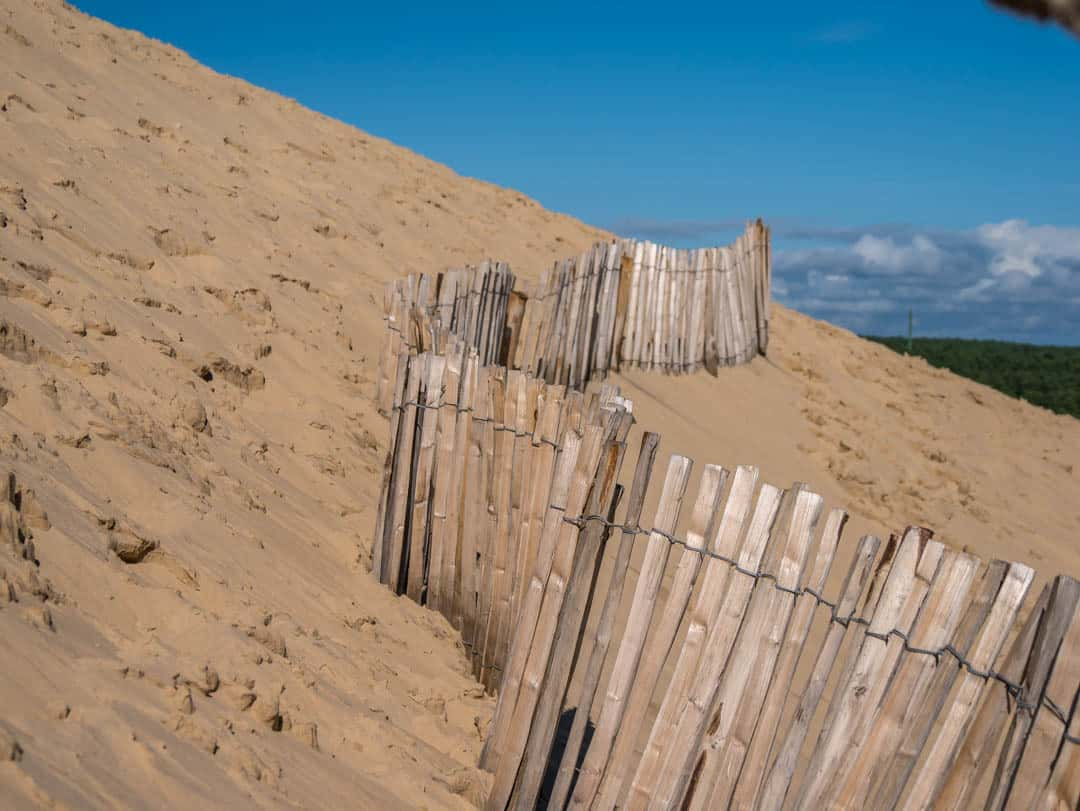 fence up on the dune