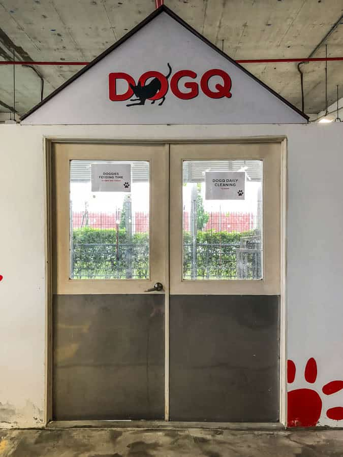 air asia dog house