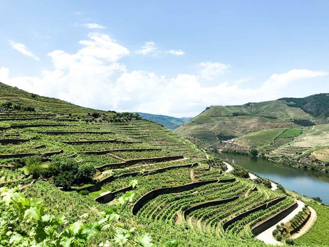 drone shot of the douro valley