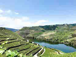 douro valley feature images