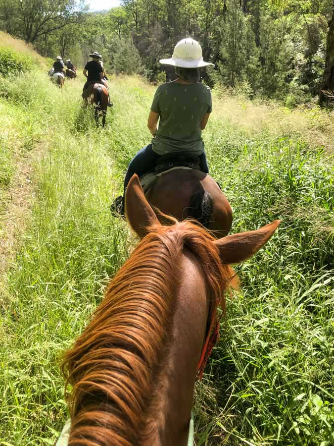 horseriding-lockyer-valley