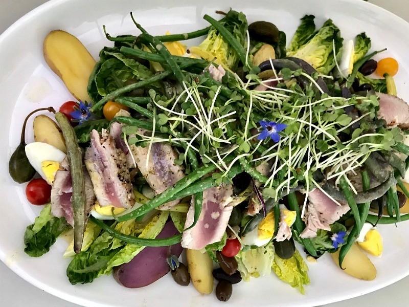 Nicoise Salad food in provence