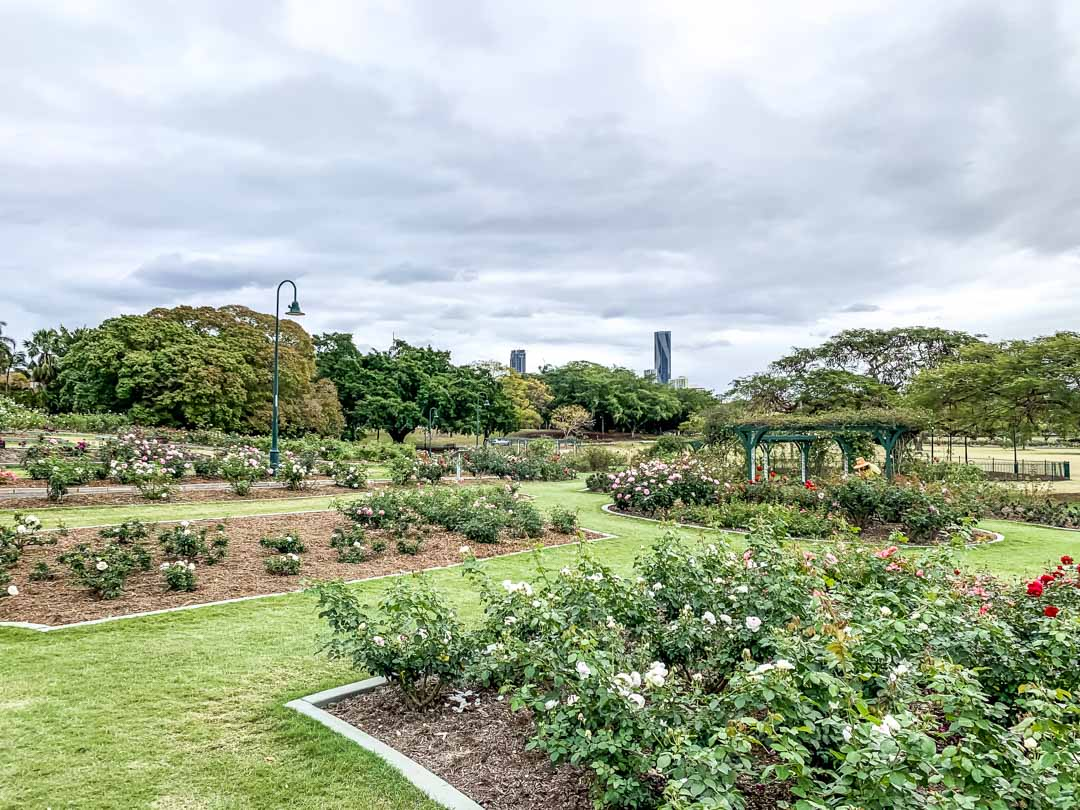 new farm park brisbane city view