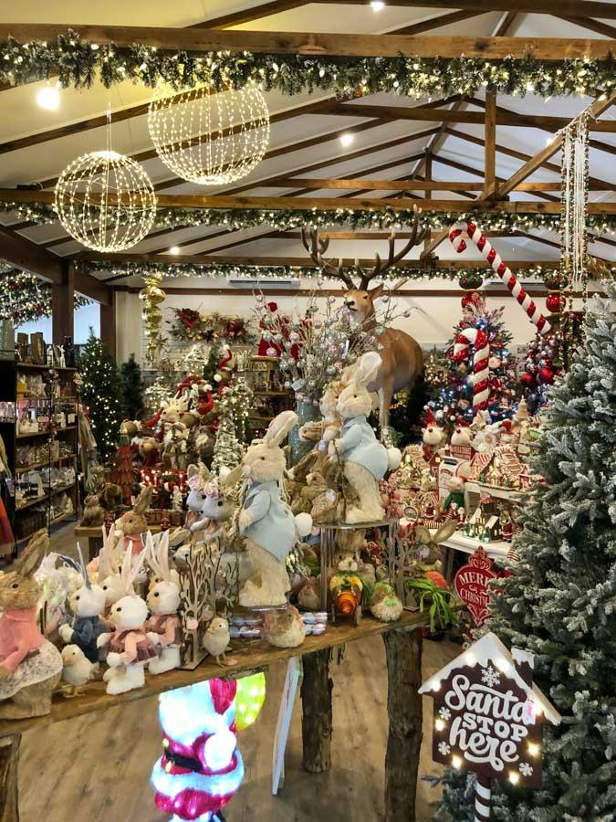 christmas tree shop stanthorpe